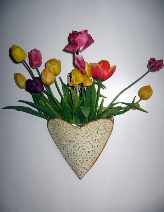 Tulips7